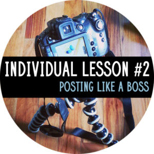 Individual Lesson #2: Posting Like a Boss